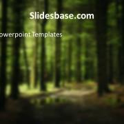 deep-dark-woods-forest-tree-mushroom-nuts-powerpoint-templateSlide1 (2)