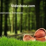 deep-dark-woods-forest-tree-mushroom-nuts-powerpoint-templateSlide1 (4)