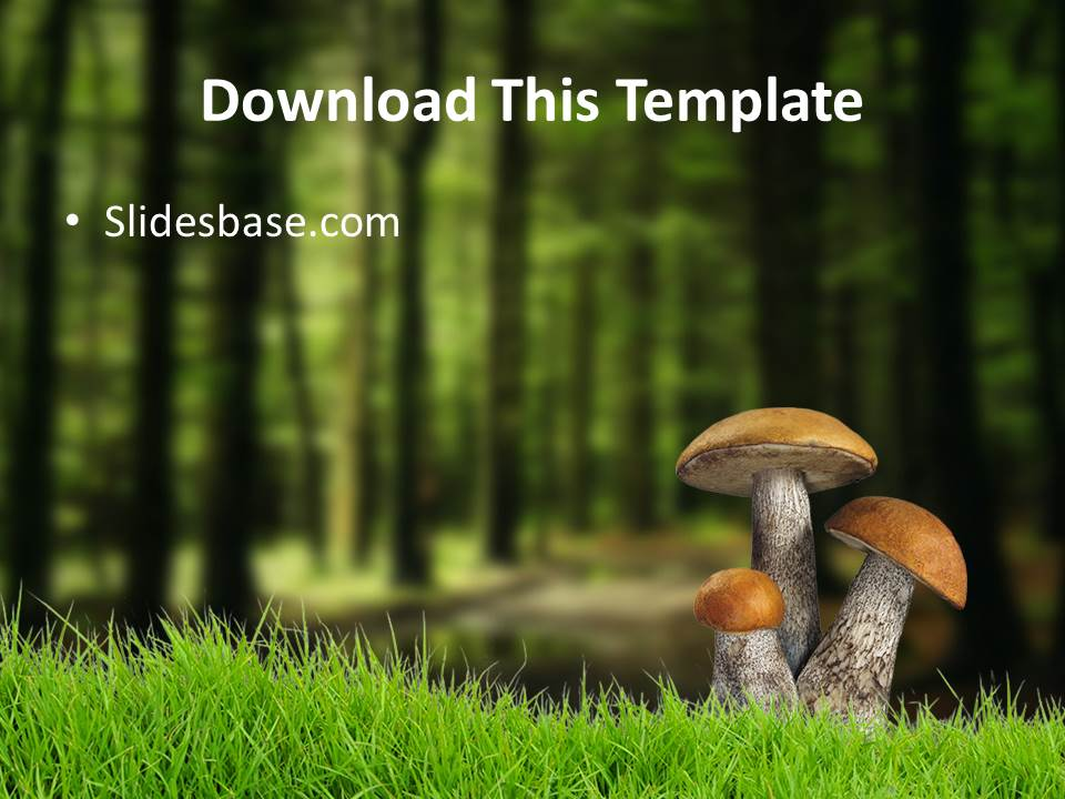 Deep woods powerpoint templates slidesbase deep dark woods forest tree mushroom nuts powerpoint toneelgroepblik