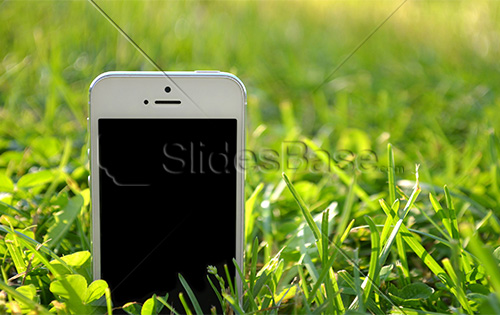 white-iphone-on-green-grass-stock-photo