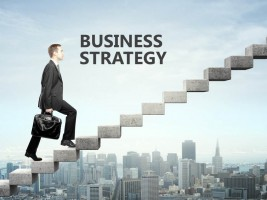 Business Strategy (17)