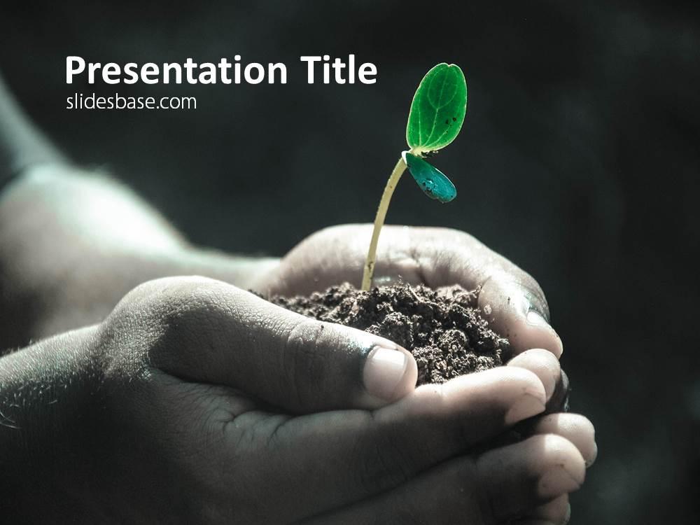 New hope powerpoint template slidesbase new hope plant growing in hand palm powerpoint toneelgroepblik Choice Image