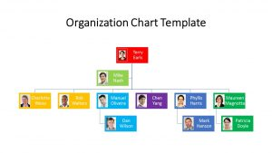 colorful-organization-chart-free-ppt-download.'-template