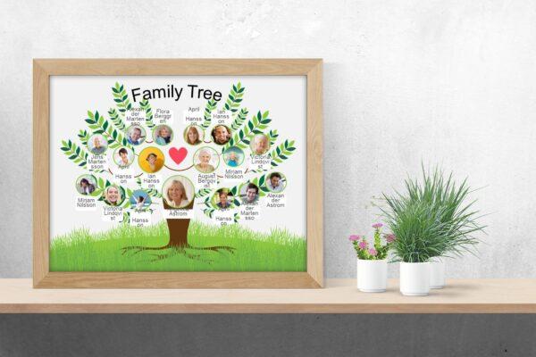 family-tree-photo